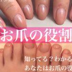 ♡お爪の役割♡